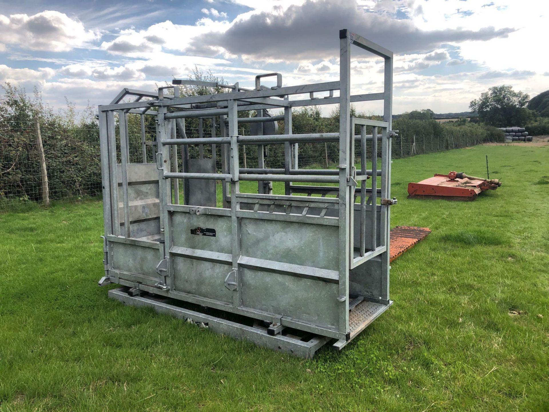 Lot 398 - Bateman cattle crush
