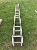 Quantity single ladders