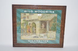 A W.D. & H.O. Wills Wild Woodbine cigarettes adver