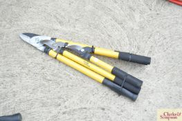 Power pruner, lopper and shears.*