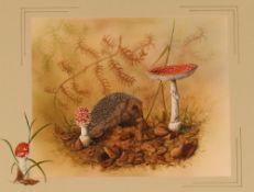Nicholas, 20th Century school, study of hedgehog a