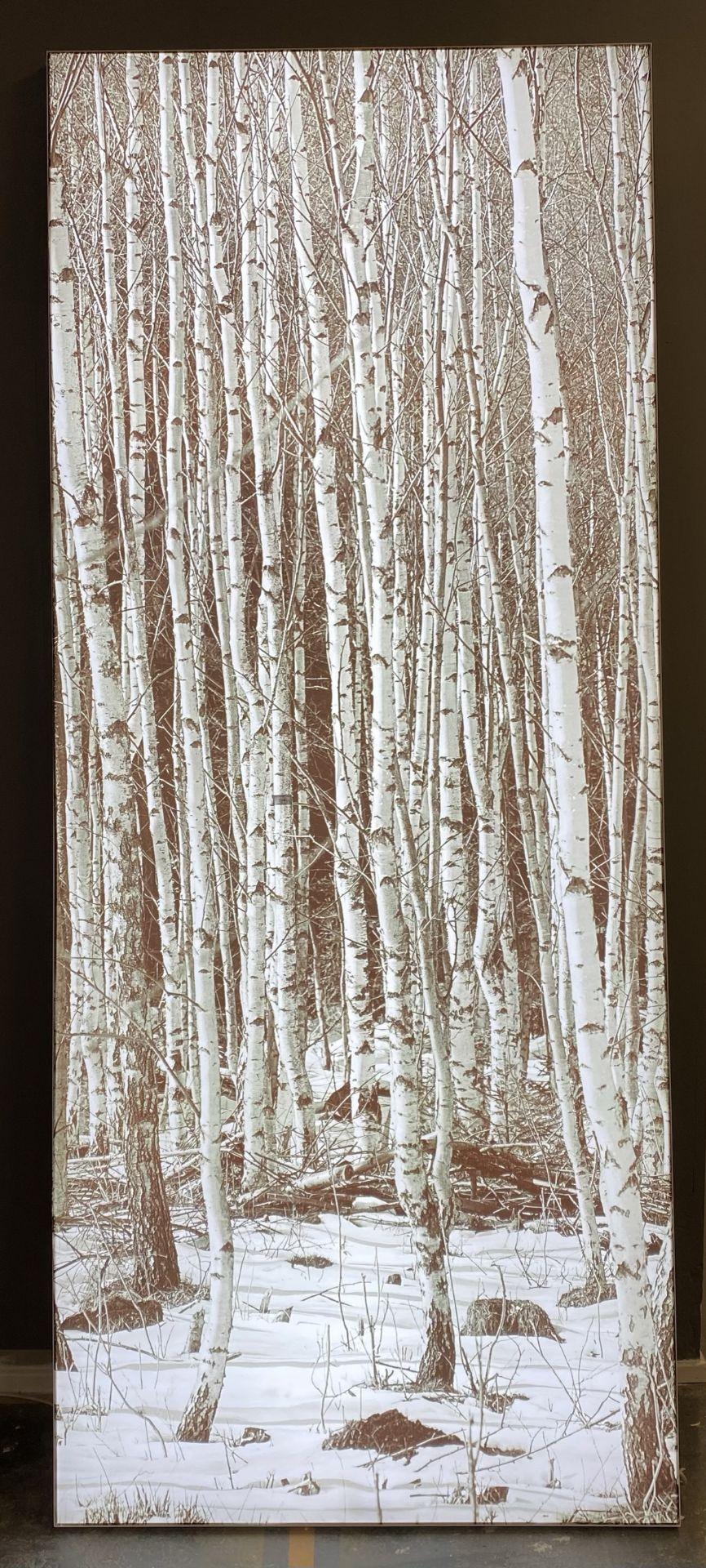A large photographic rectangular illumin - Image 2 of 2