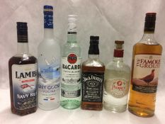 6 x bottles of assorted spirits - Famous
