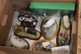 Various Border Fine Art animal figure groups including a hand painted pony