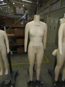 *Alvaform Woman Size 36 EU Standard Dressmakers Mannequin