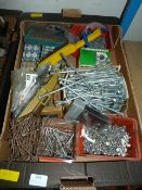 Screws and Coach Bolts