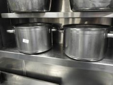 *Two Heavy Bottom Stainless Steel Pans with Twin Handles
