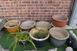 Nine Garden Platers and Contents