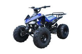 + VAT Brand New 125cc Cheetah Quad Bike - Rear Frame - Colours May Vary - Available Approx 5