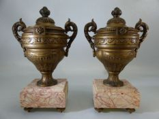 Pair of decorative French urns on marble plinths