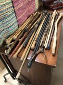 Large collection of assorted walking sticks