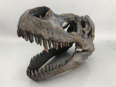 Modern ornamental T-Rex dinosaur skull with fixings for wall hanging, approx 40cm in length