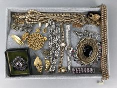 Collection of Costume jewellery to include brooches and necklaces etc