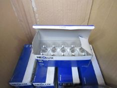 4x Packs of 10 Neolux 12v 21w vehicle bulbs, all new and boxed.