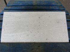 Pallet of 40x Packs of 5 Conglomerates Classic grey Matt finish 300x600 wall and Floor Tiles By