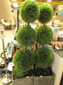 Cedar Ball Topiary. 56cm Tall Needs bending back into place. RRP £99