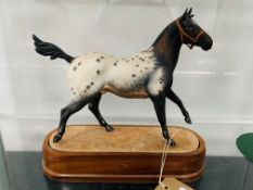 Royal Worcester Appaloosa Stallion RW3869 dated 1969, limited edition of 750 by Doris Lindner.