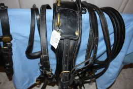 Set of black leather cob harness with brass fittings; no noseband nor buckle on breastplate