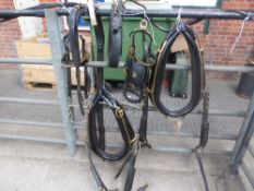 2 sets of black leather/brass harness to make up a PAIR set for 16hh, collars approx. 22 x 9 inches
