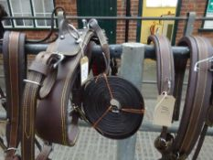 Set of brown/whitemetal breastcollar harness to fit a cob