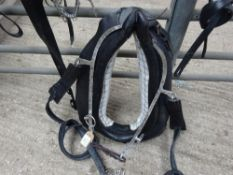 Set of cob size English working harness with collar approx. 21 x 8 inches - carries VAT