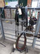 Set of black leather/brass collar harness to fit 14.2hh pony, collar size approx. 23 x 8 inches