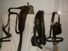 Set of brown leather/brass harness to fit a 14.2hh pony