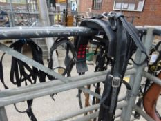 Set of webbing pony harness to suit 11 to 12hh