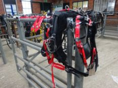Set of black/red quick hitch pony size trotting harness