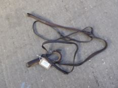 Unusual bitless bridle with fixed martingale