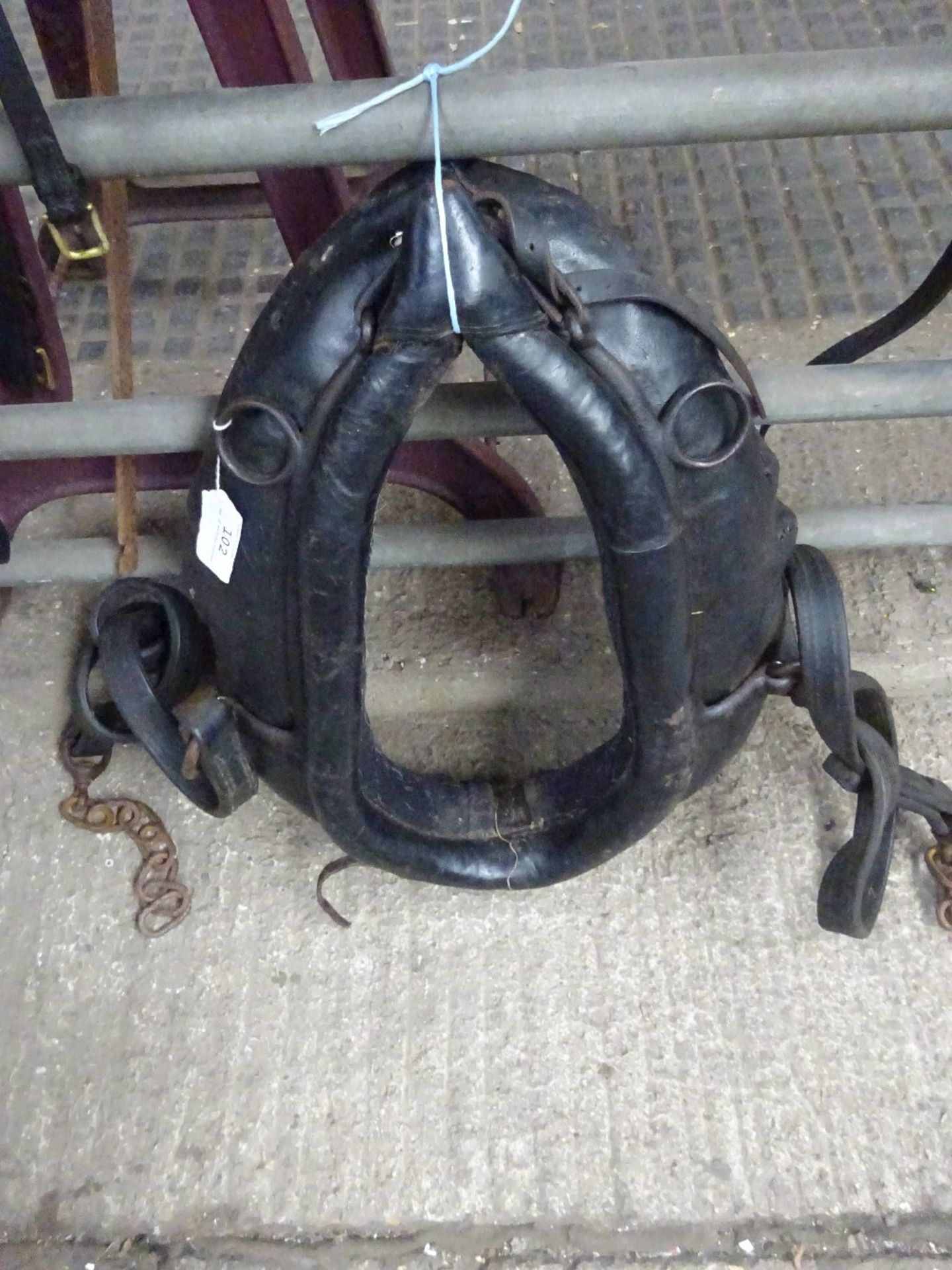 Set of working harness.,collar size approx. 20 x 9 inches. - Image 2 of 4