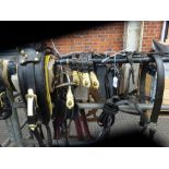 Set of working harness.,collar size approx. 20 x 9 inches.