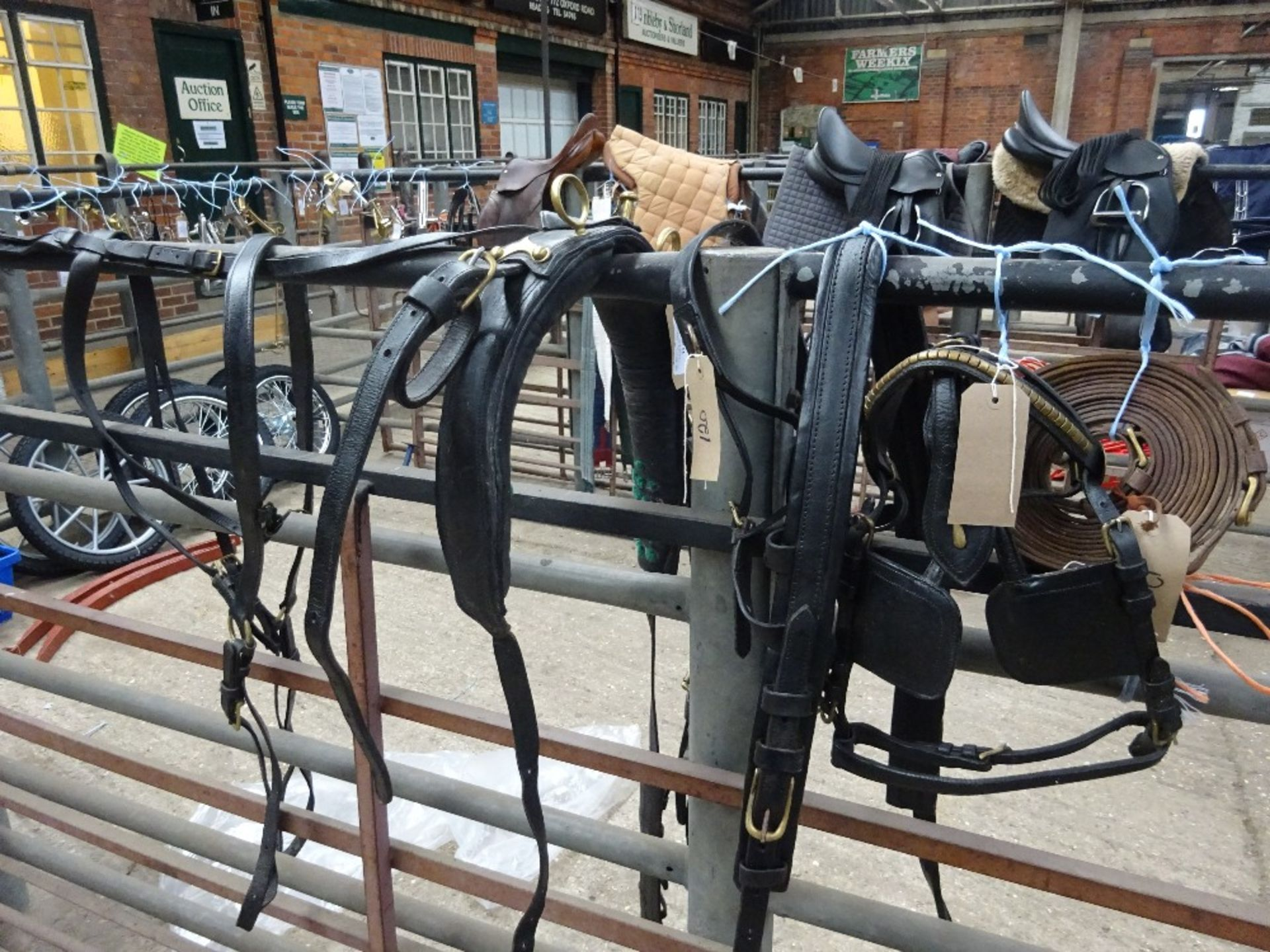 Set of black/brass harness to fit a 13 to 14hh pony - carries VAT. - Image 2 of 3