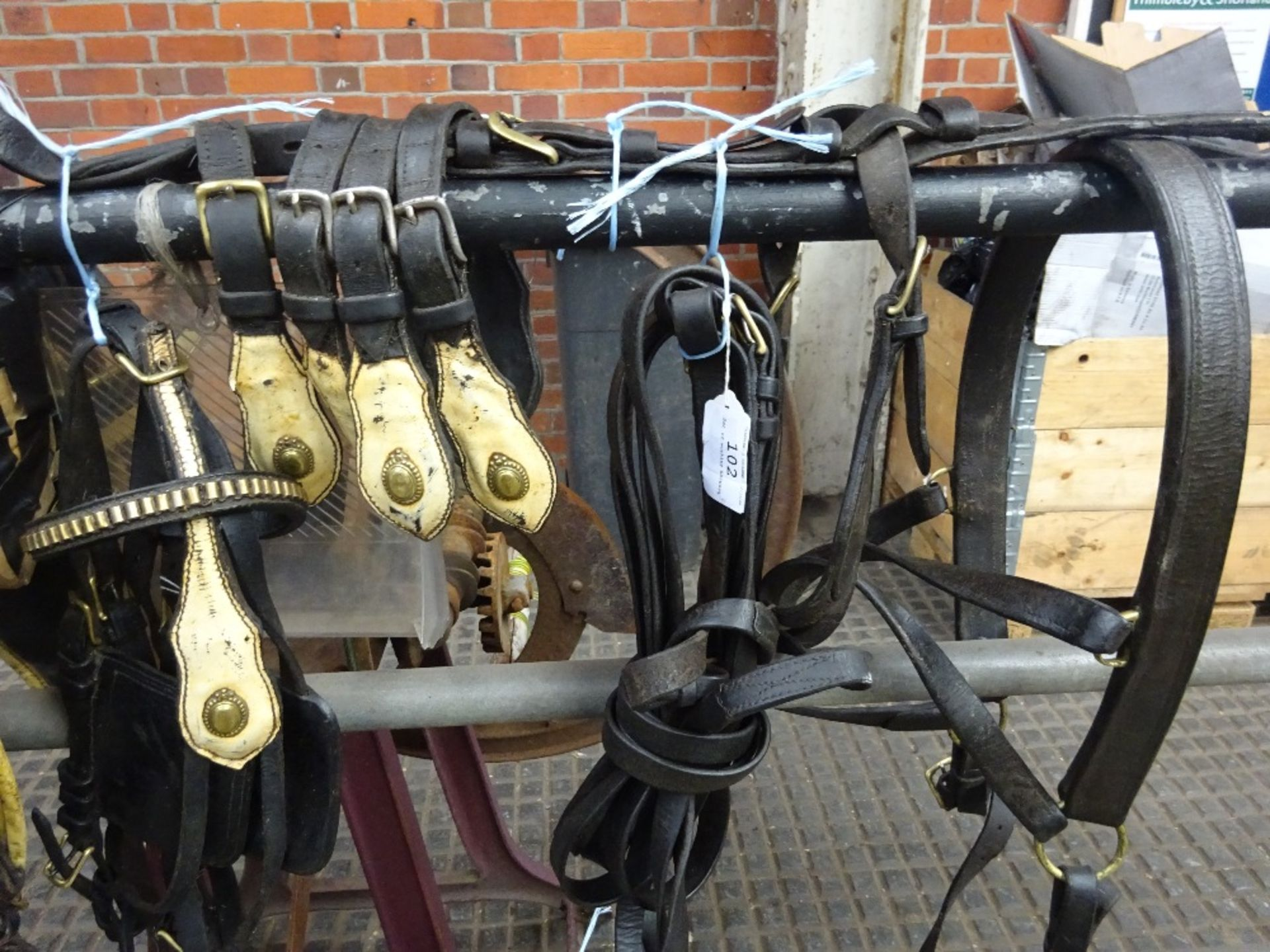 Set of working harness.,collar size approx. 20 x 9 inches. - Image 3 of 4