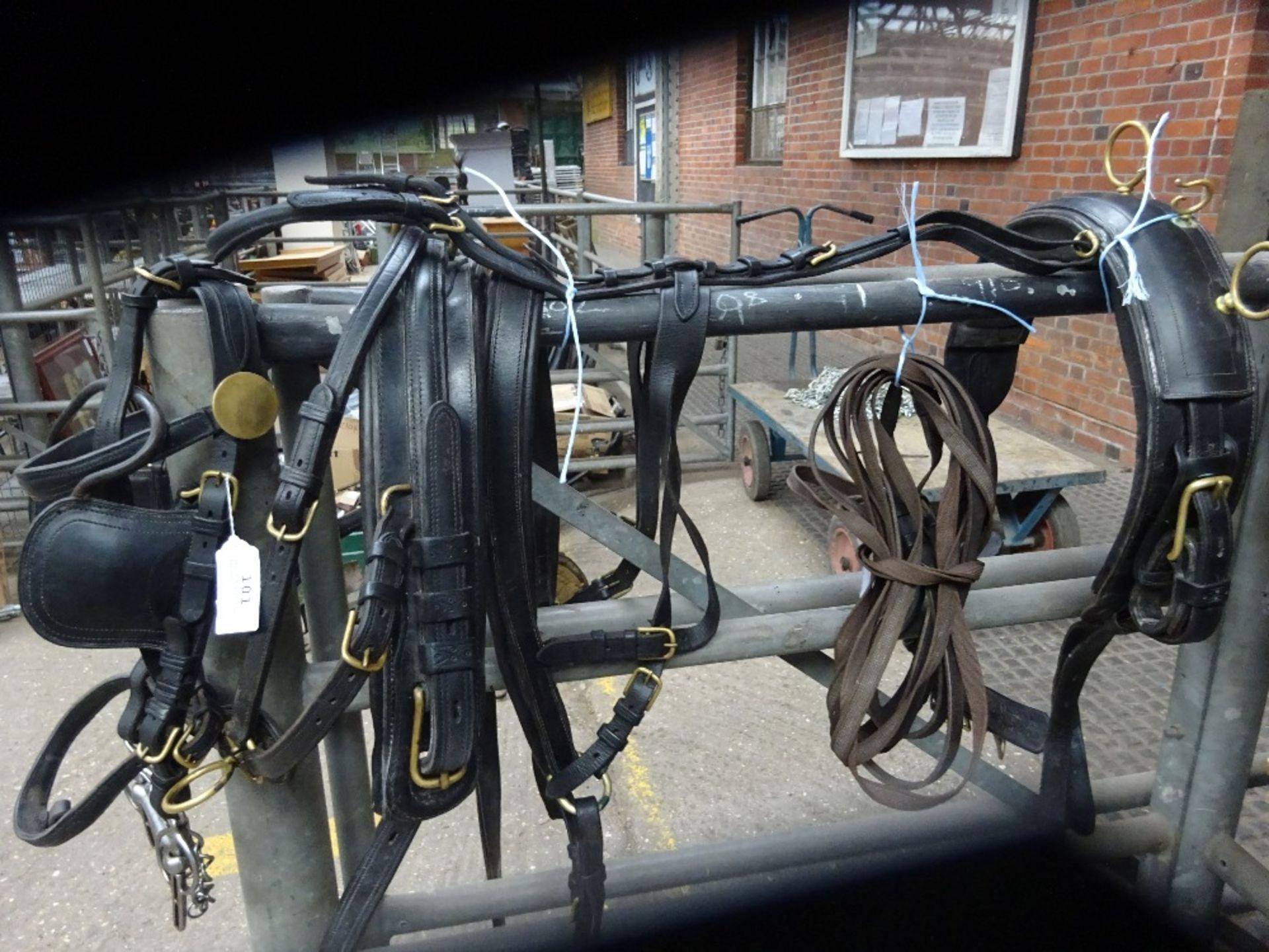 Set of English trap harness. - Image 2 of 4