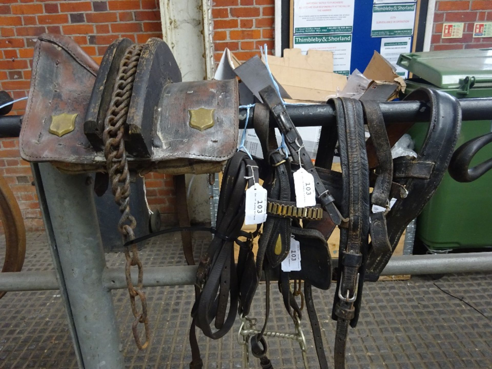 Set of donkey harness.