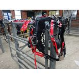 Set of black/red quick hitch pony size trotting harness - carries VAT.