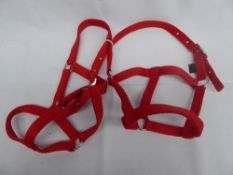 2 x red mini pony headcollars