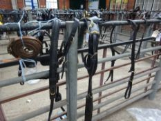 Set of black/brass harness to fit a 13 to 14hh pony - carries VAT.