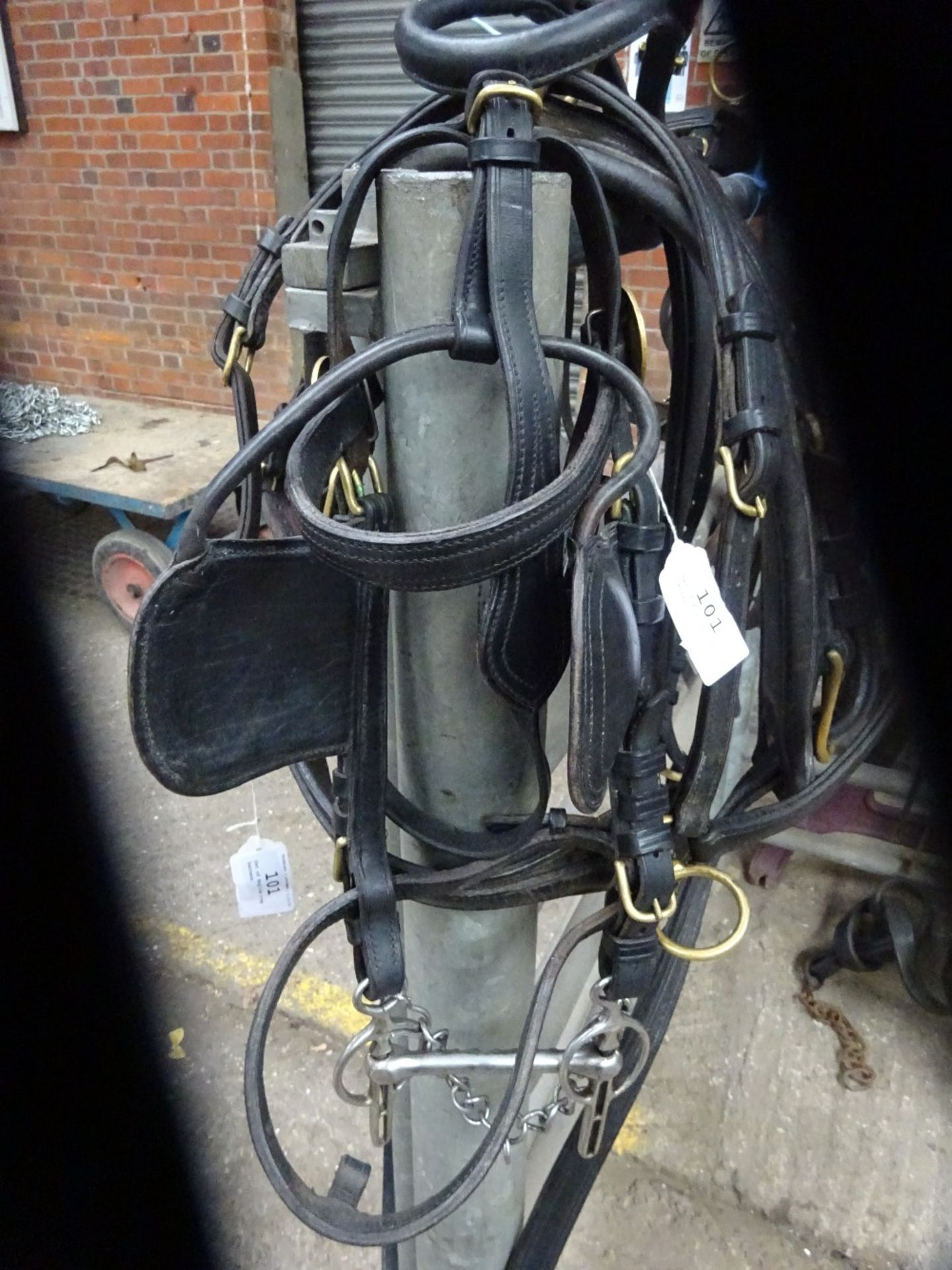 Set of English trap harness. - Image 3 of 4