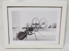 1 x Framed Art Print Of An Ant - Dimensions: 57 x 46cm - Ex-Display - Ref: WH1/U-OFF - CL087 -