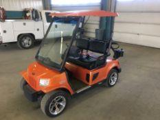 2009 Tomberlin Emerge 500 LE Golf Cart