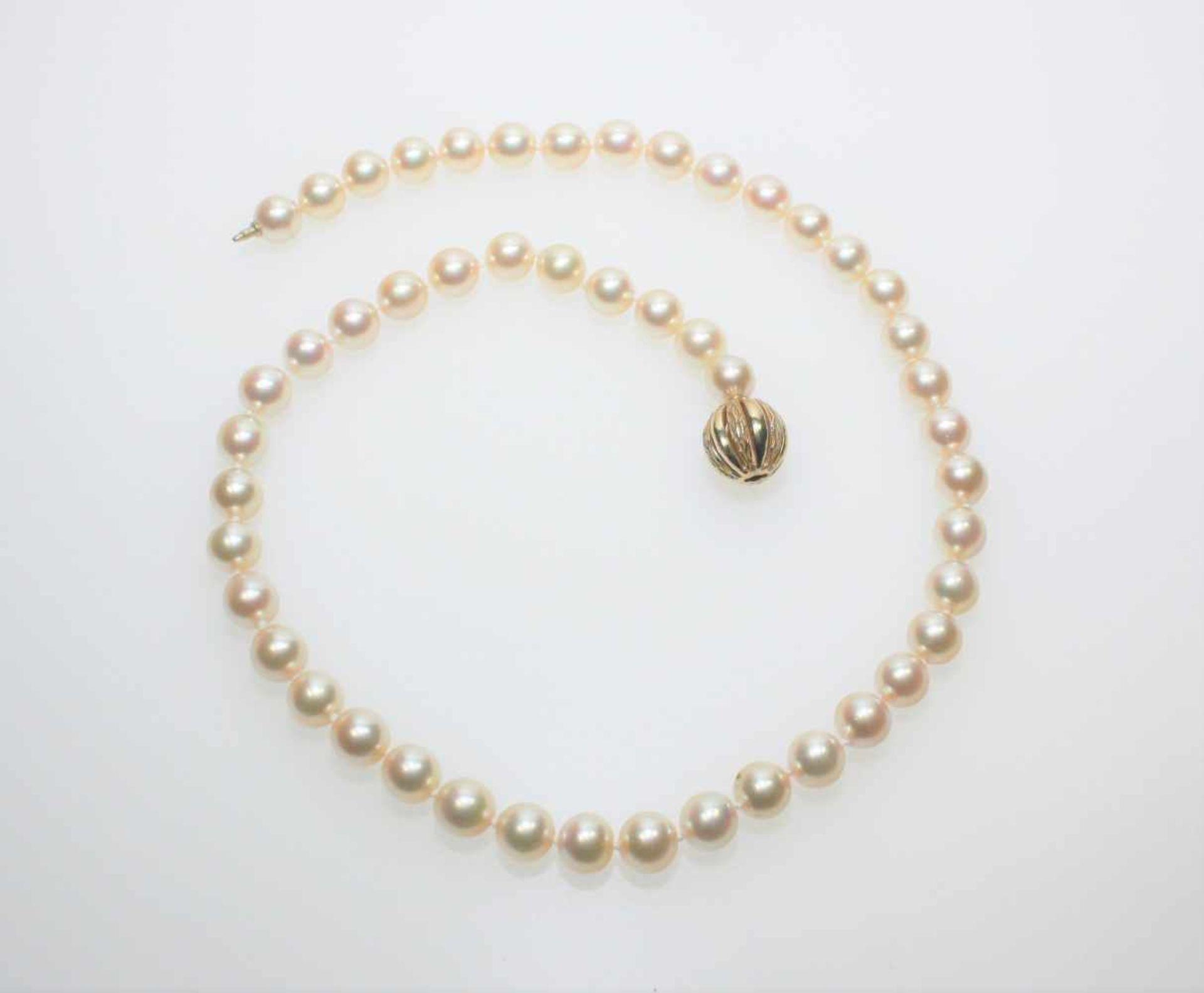Los 57 - Feine Zuchtperlenkette Choker, Durchm.ca. 7,7 mm leicht goldfarbig, Perlen in feinem Lüster, goldene