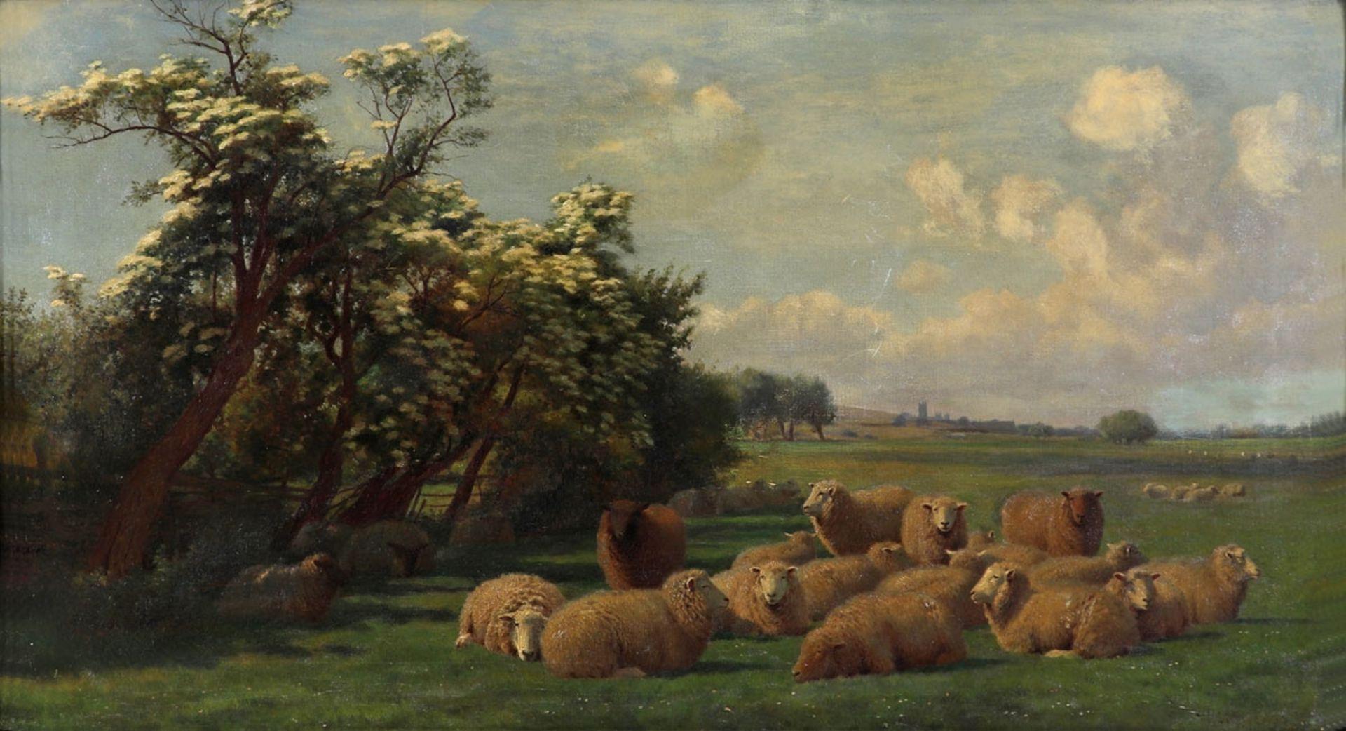 William Sidney Cooper