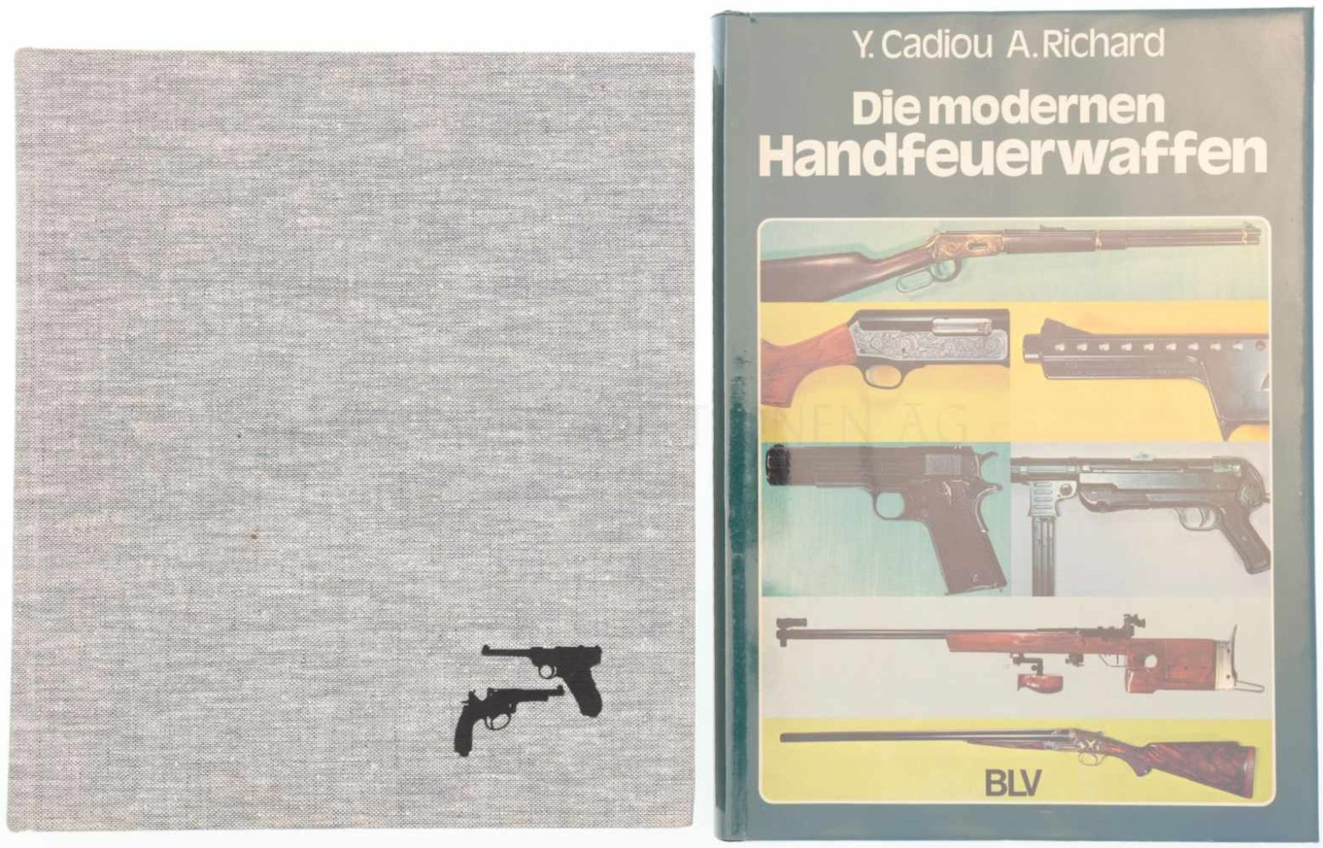 Konvolut 2 Bücher<