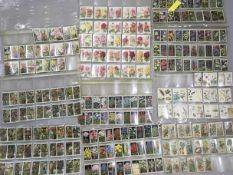 A large quantity of gardening/floral cigarette cards , De Reszke Roses, series of 25, CWS Tyneal