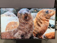"Panasonic 55"" Full HD LCD Display TH-55LF8W Plasma Screen Serial No XE6161265 DOM 2016 2 HDMI Input"
