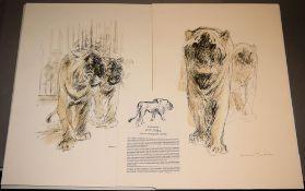 """Otto Dill, Kunstmappe """"Pferde und Löwen"""" mit 7 Offset-Lithographien"""