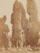 Robert MacphersonZypressen bei Santa Maria degli Angeli
