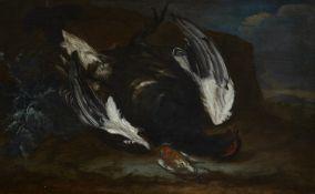 Philipp Ferdinand de Hamilton, zugeschriebenStillleben mit Vögeln